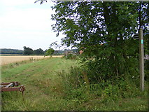 TM3662 : Footpath to St.Mary's  Church, Benhall by Adrian Cable