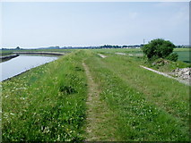 TQ0004 : Footpath on bank of River Arun (1) by Peter Holmes