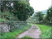 SH3137 : Concreted track through Coed Bryn Hendre  by Eric Jones