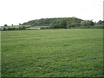 ST6594 : Ridge-and-furrow south of Woodend Lane by Robin Stott