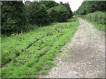 SK2566 : Derwent Valley Heritage Way near Rowsley by Chris Wimbush