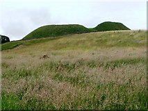 NY9393 : Motte and bailey, Elsdon by Christine Johnstone