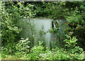 TQ4062 : Disused Portable Building near Leaves Green by Stephen Richards