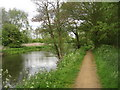 SU6369 : Path along the river Kennet by Logomachy