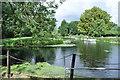 TL9369 : Mill Pond of Pakenham Watermill by Ashley Dace
