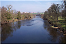 NY5046 : Eden downstream from Armathwaite bridge by Tom Brewis