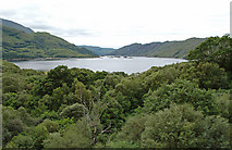 NM7682 : Woodland at the head of Loch Ailort by John Allan