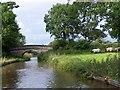 SJ8459 : Bridge 83, Macclesfield Canal by David Martin