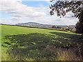 SO3518 : Farmland at Gelli-llwyd by Trevor Rickard