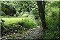 SX0789 : Tintagel: near Trevillett Mill by Martin Bodman