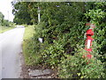 TM4162 : Grove Road  & Crossroads George V Postbox by Adrian Cable