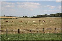 TA0912 : Croxton view by Richard Croft