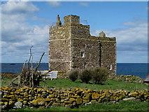 NU2135 : Pele Tower, Inner Farne Island by Trevor Littlewood