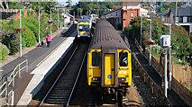 J4791 : Trains at Whitehead by Albert Bridge
