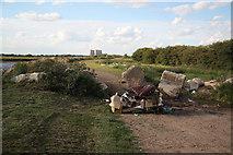 SK8166 : Rural blight by Richard Croft