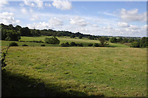 SK7527 : Pasture at the edge of the Vale of Belvoir by Kate Jewell