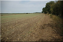 SO9762 : Arable land near Park Farm by Philip Halling