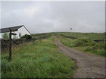 NY7844 : Part of Isaac's Tea Trail Walk near Nenthead by Les Hull