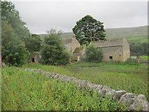 NY8048 : Whitley Shield Farm, Carrshield by Les Hull