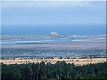 NU1341 : Lindisfarne Castle from Fawcet Hill by Oliver Dixon