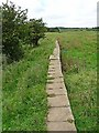 NU1033 : St Oswald's Way near Westhall Farm by Oliver Dixon