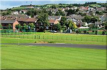J4792 : Playing fields, Whitehead by Albert Bridge