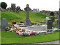 R6154 : Graveyard at Ballysimon by David Hawgood