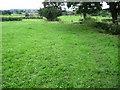 SJ8952 : Staffordshire Moorlands Walks footpath towards Norton Green by Chris Wimbush