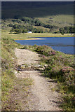 NH0155 : Footpath by Loch Coulin by Dorothy Carse
