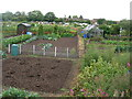 SE7527 : Allotments, Howden by JThomas