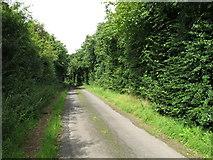 R5154 : Lane near Tervoe by David Hawgood