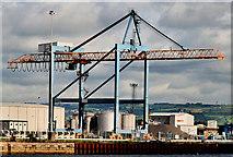 J3475 : Container crane, Belfast harbour by Albert Bridge