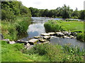 R6461 : Stepping stones to island in River Shannon at Doonass by David Hawgood