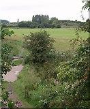 SJ8092 : Mersey flood plain below Jackson's Bridge by Derek Harper