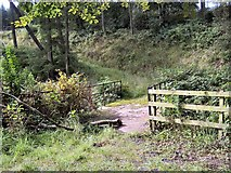 NX6548 : Bridge over Corraford Burn by Helen Bowick