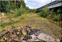 J3475 : Development site, York Street, Belfast (1) by Albert Bridge