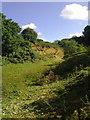 TF7421 : Green Hill small quarry by Martin Pearman
