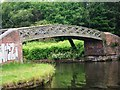 SO9891 : Towpath bridge at Albion Junction by John Brightley