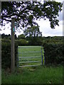 TM3775 : Footpath to the B1117 Halesworth Road & the Congregational Chapel by Adrian Cable