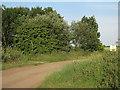 TL4674 : Fen Side byway leaving Looe Way by Hugh Venables