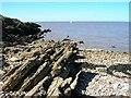 ST3971 : Rock outcrops in Littleharp Bay, Clevedon by David P Howard