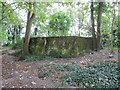 SU5985 : Moss covered sides by Bill Nicholls