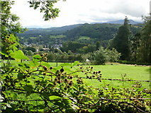 NY3704 : Ambleside from Thistly Wood by Peter S