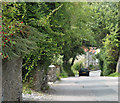 ST6263 : 2010 : Down the hill into Pensford by Maurice Pullin