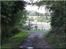 SP1670 : Tinker's Lane by Robin Stott