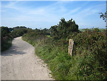 SW7145 : Sign on the Mineral Tramway at Wheal Plenty by Rod Allday