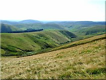 NT8514 : South Cheviot valleys by Oliver Dixon