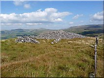 NT8615 : Cairn on the slopes of Windy Gyle by Oliver Dixon