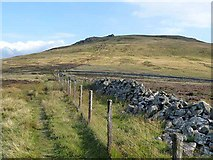 NT8622 : Pennine Way north  of the Schil by Oliver Dixon