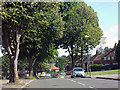 SP0182 : Alwold Road by Row17